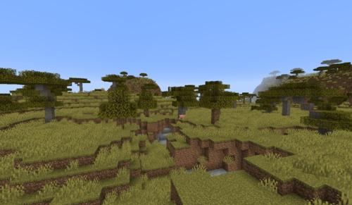 savanna-biome