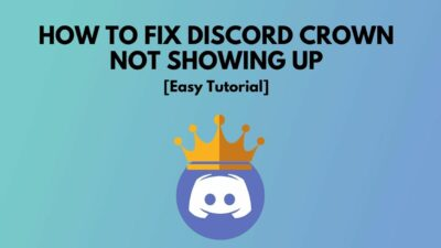 fix-discord-crown-not-showing-up